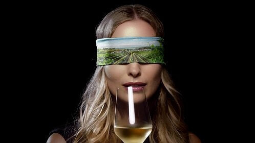 Weinviertel DAC Beitragsbild